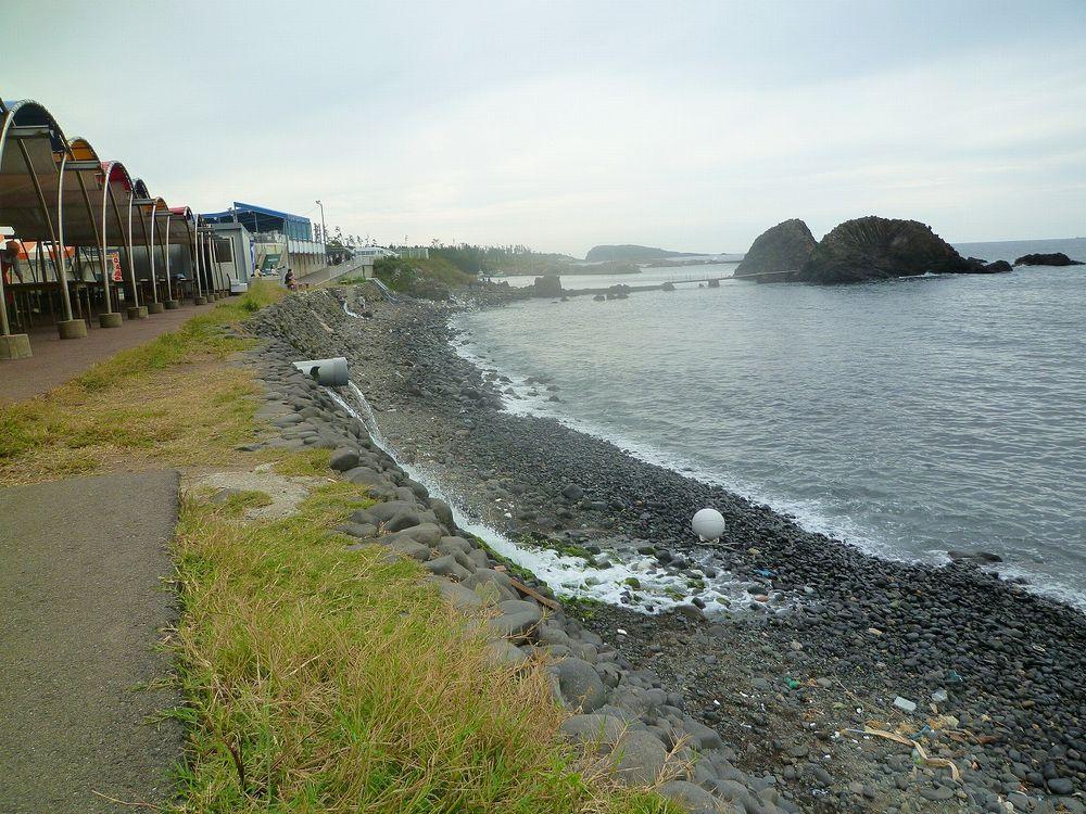 越前松島水族館 (14)r