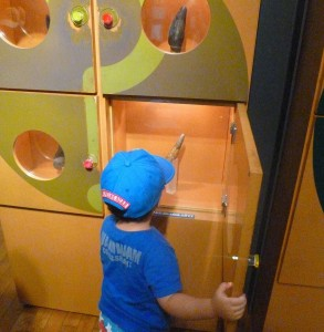 恐竜博物館 (10)r